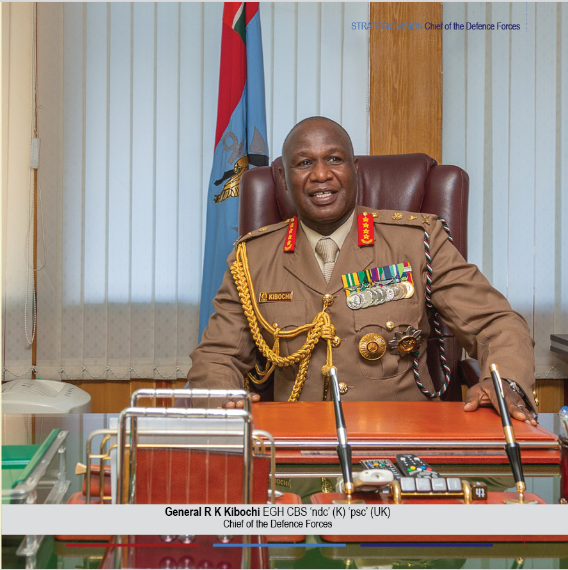 CHIEF OF THE DEFENCE FORCES STRATEGIC VISION