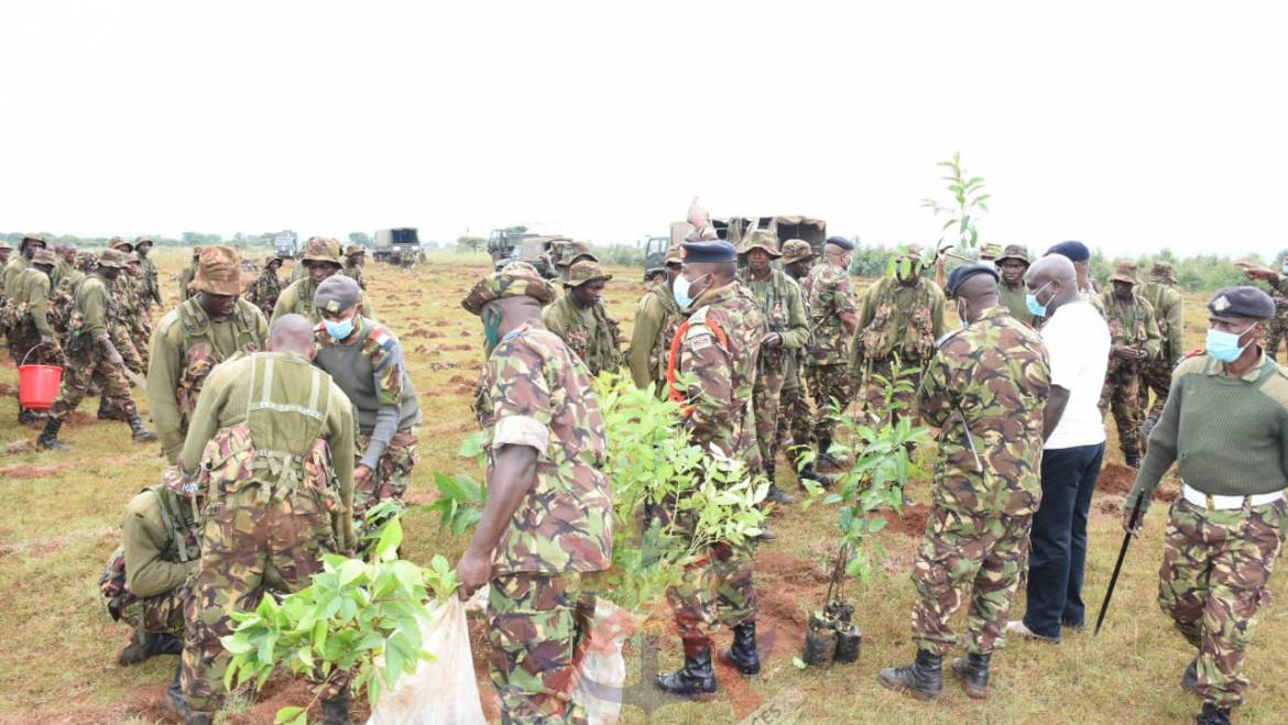 KDF TREE PLANTING EXERCISE