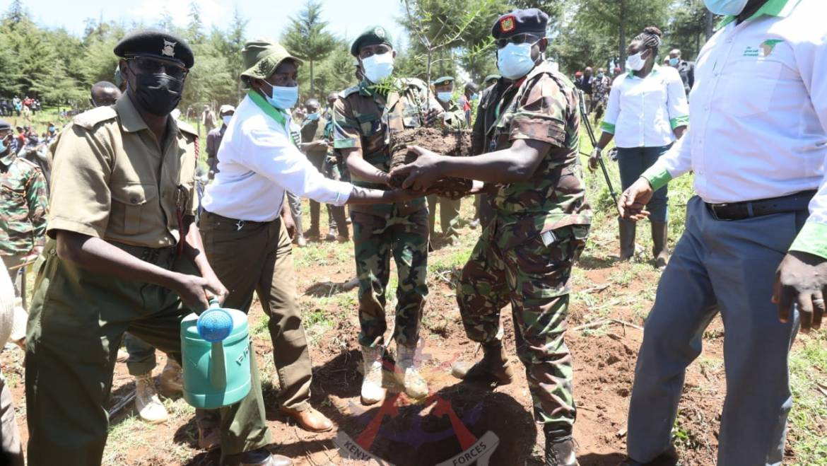 KENYA ARMY TROOPS AND GREEN BELT MOVEMENT PERSONNEL PLANT 180,000 TREE SEEDLINGS IN KAMARA FOREST